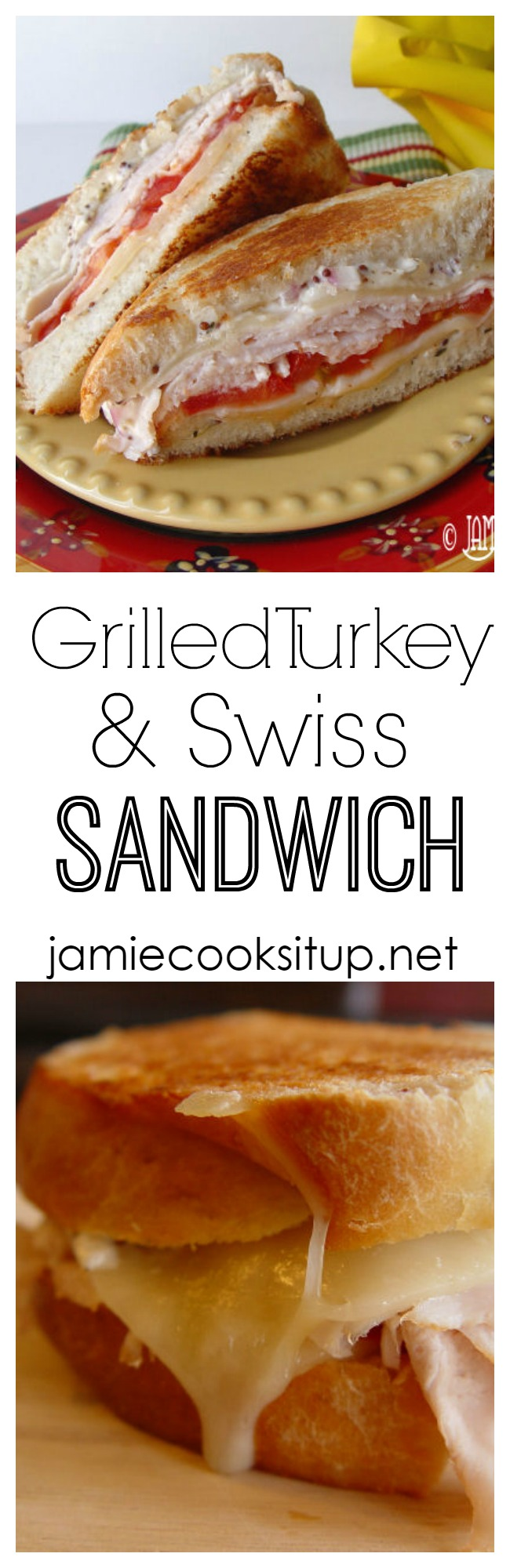 Grilled Turkey and Swiss Sandwich from Jamie Cooks It Up!