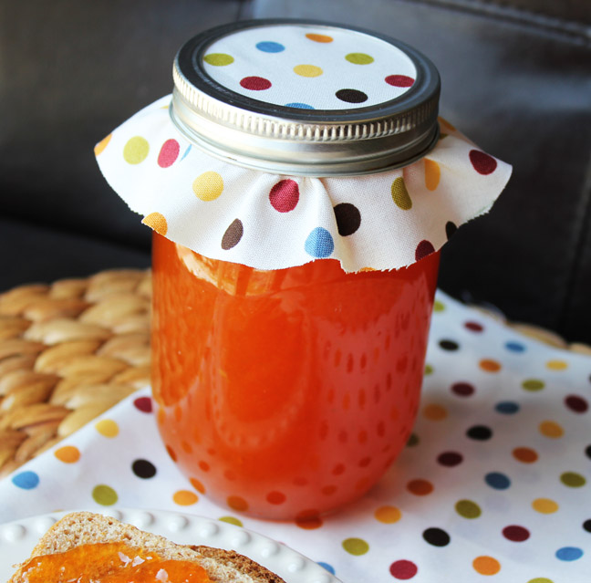 Homemade Apricot Jam from Jamie Cooks It Up!