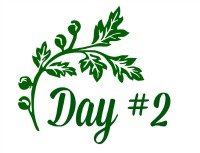 Green Leaf Day 2