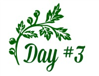 Green Leaf day 3