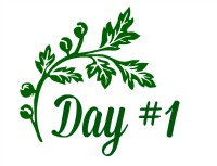 green leaf Day 1