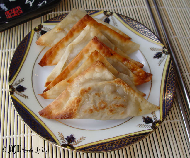 Homemade Won Tons with Dipping Sauce