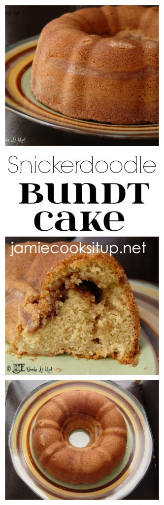 Snickerdoodlet Bundt Cake from Jamie Cooks It Up!