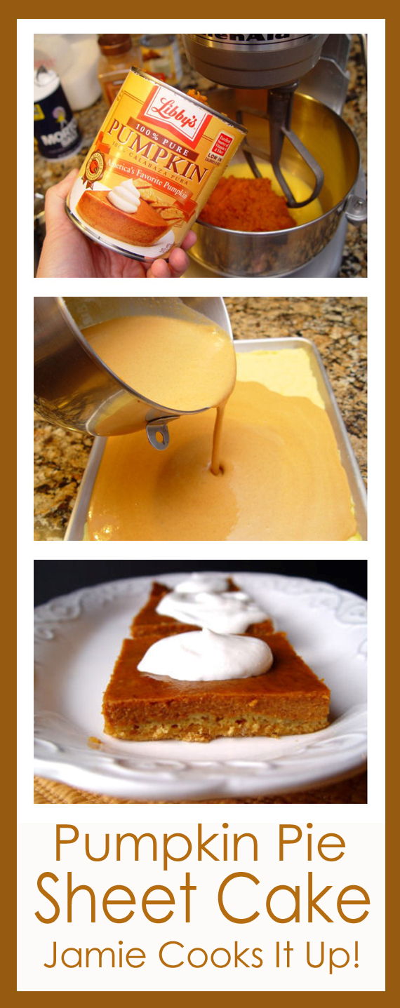 Pumpkin Pie Sheet Cake from Jamie Cooks It Up!