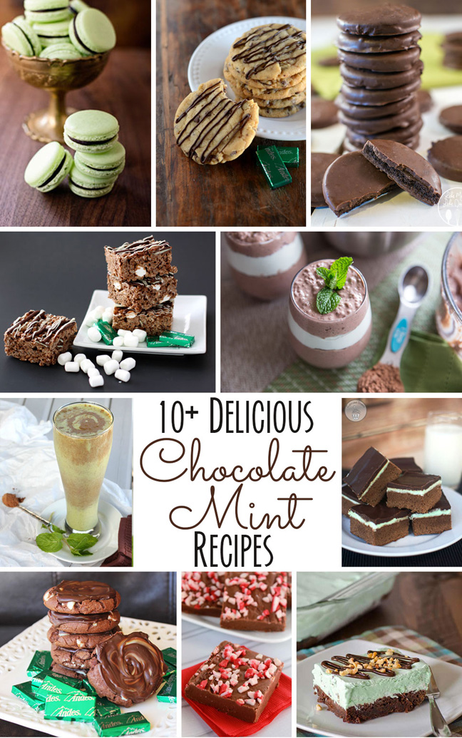 10 Plus Mint Chocolate Recipes