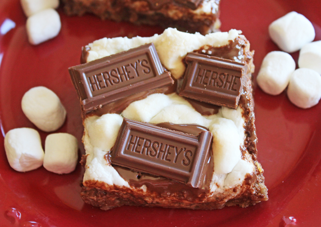 Chewy Chocolate Chip Smore Bars
