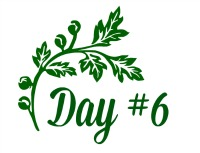 Green Leaf Day 6