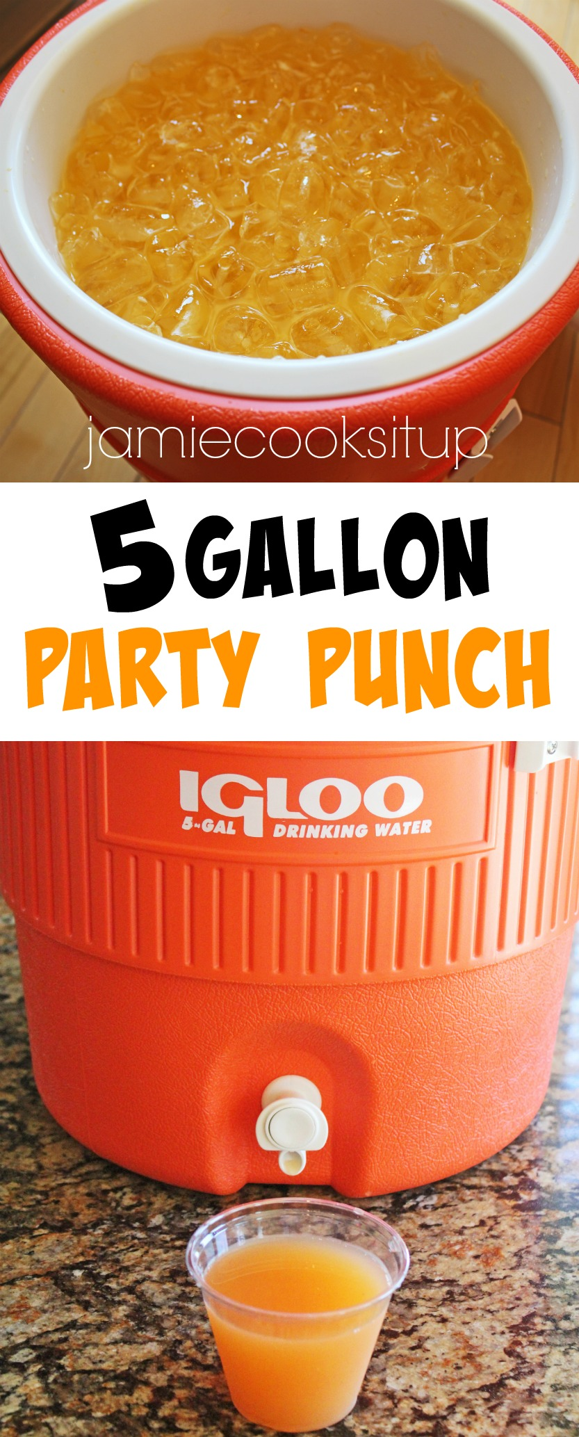 5 Gallon Party Punch from Jamie Cooks It Up!