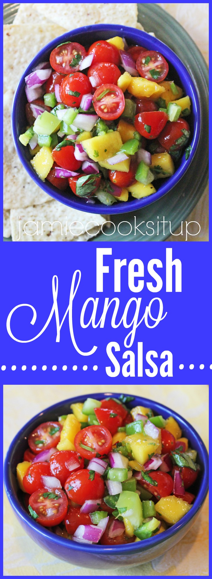 Fresh Mango Salsa from Jamie Cooks It Up!